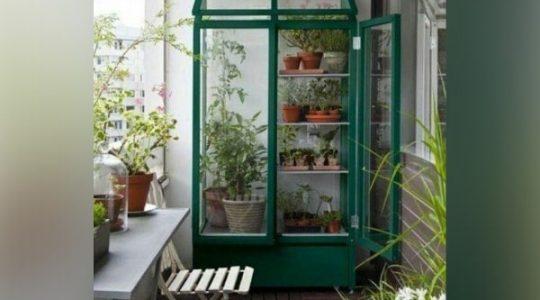 مزایای گلخانه شیشه ای